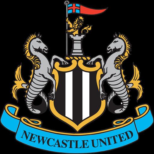 Newcastle United Logo DSL 2019