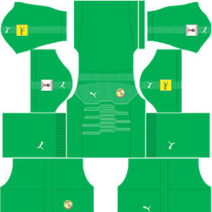 Dream League Soccer Senegal Goalkeeper away kit 2018 - 2019-2020