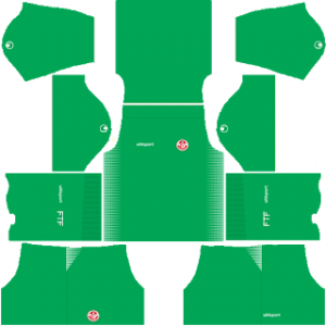 Dream League Soccer Tunisia goalkeeper home kit 2018 - 2019