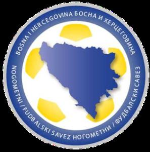 Dream League Soccer Bosnia and Herzegovina logo 2018 - 2019