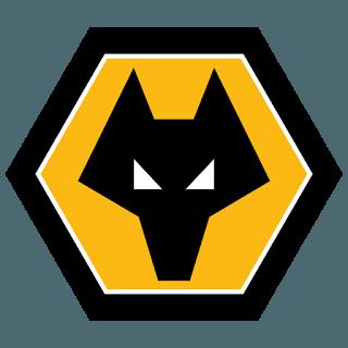 DLS Wolverhampton Logo 2019-2020