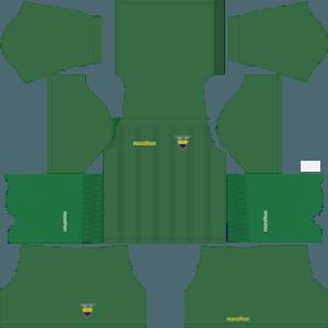Dream League Soccer Ecuador goalkeeper home kit 2018 - 2019-2020
