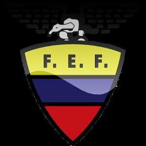 Dream League Soccer Ecuador logo 2018 - 2019