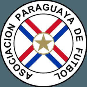 Dream League Soccer Paraguay Logo 2018 - 2019