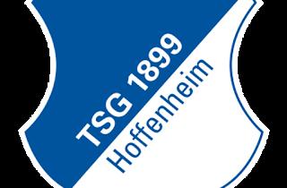Dream League Soccer 1899 Hoffenheim Kits and Logos 2018, 2019 – [512X512]