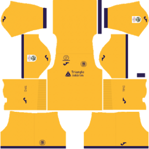 Toulouse gk home kit